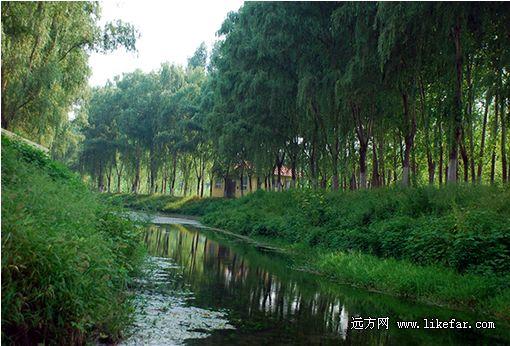 长沟的小河 摄影:王咩咩
