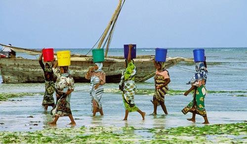 东非国家坦桑尼亚