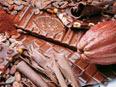 巡游瑞士手工巧克力工厂