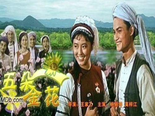 《五朵金花》电影海报