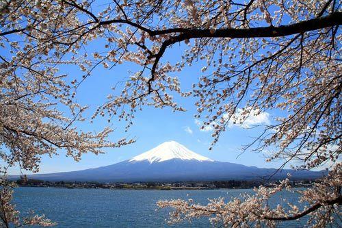 日本自助游攻略 最经典线路美丽依然