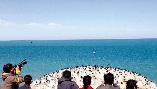 青海湖的鸟岛,吸引了众多游客前来观光。(新华社记者 嘎玛摄)