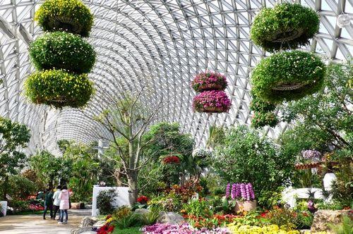 辰山植物园温室