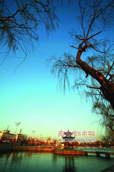 山东聊城水网密布,被誉为江北水城。 CFP供图