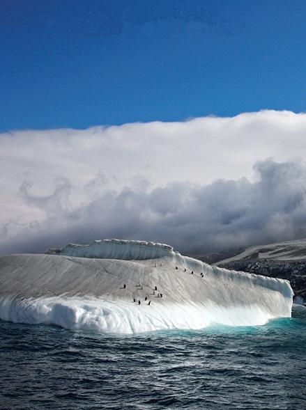 南桑威奇群岛:冰与火之间的冷酷仙境(组图)