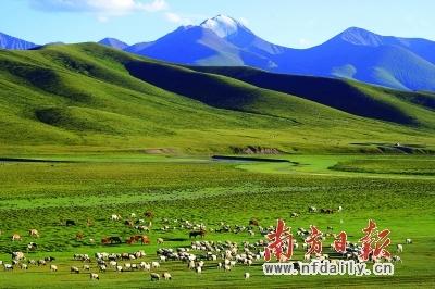 雪山环抱的草原