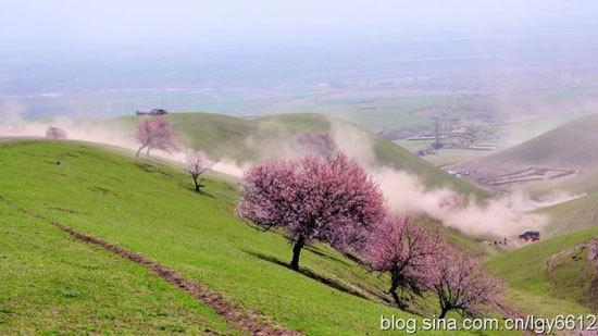 美丽的仙境 摄影:游牧天山