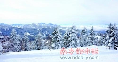 志贺高原雪山