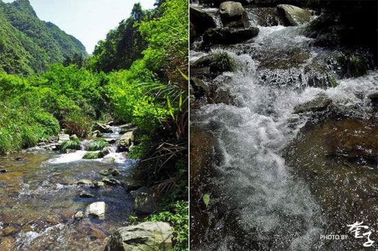 浙江桐庐:深山老林中的激情探险图片
