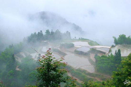 云雾缭绕,恍若仙境