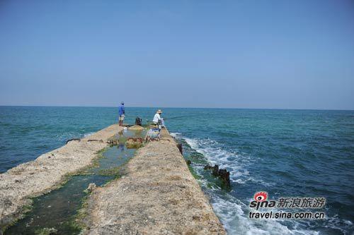 老码头海岸