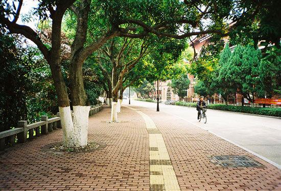 新浪旅游配图:厦门大学 摄影:iceque