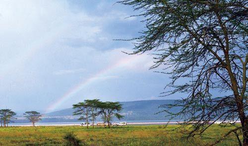 梦幻而神秘的非洲大陆