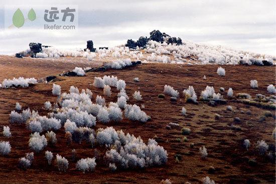 呼天八月阿斯哈图 摄影:白显林