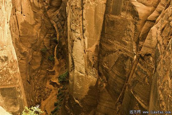 红砂岩大峡谷 作者:空游无依