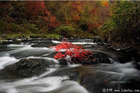 十五道沟又称为望天鹅风景区,位于吉林省长白朝鲜族自治县中部.