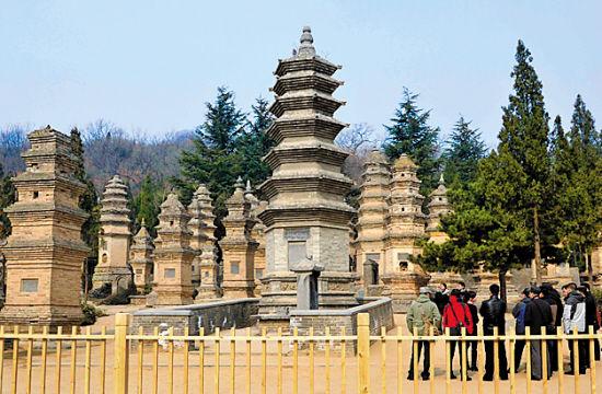 嵩山少林寺塔林,是最重要的塔林之一。 王颂 摄