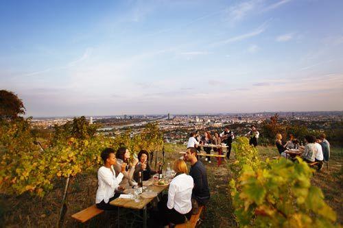 哈易斯赞葡萄酒庄_©维也纳旅游局_皮特•里高摄