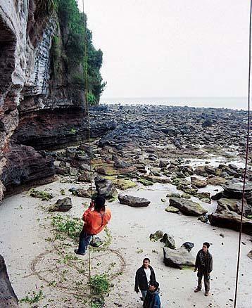 亚洲 中国 广西 北海市 正文    斜阳岛无营业性住宿点,可露营;或联系