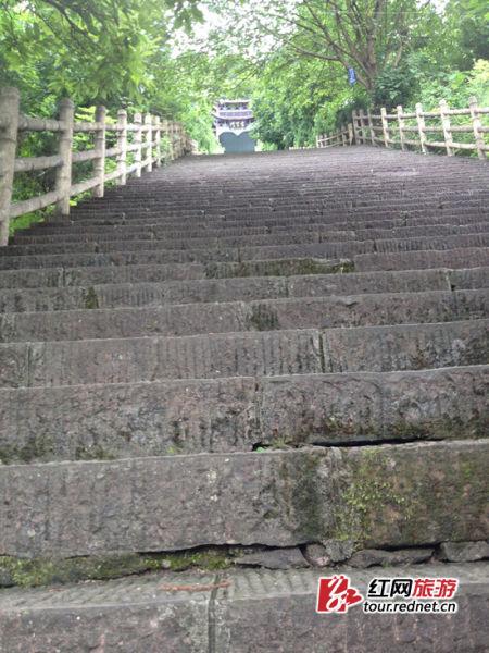 """要登上""""文化圣山""""二酉山的第一关:345级阶梯。"""
