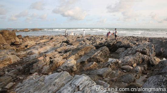 已经被海水拍打成型的岩石 图片来源:阿龙妈妈 新浪博客