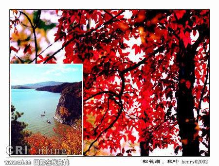 松花湖,荡舟于浓浓秋色中