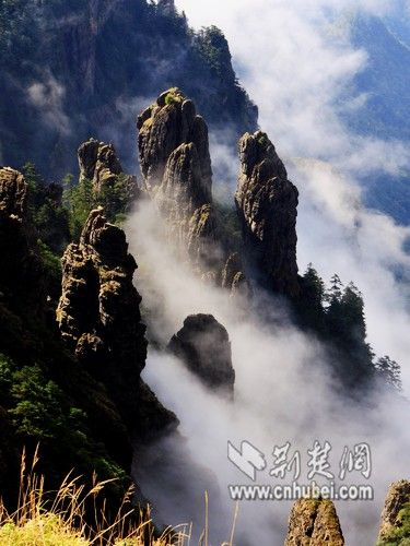 神农谷云海