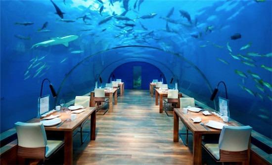 马尔代夫港丽度假酒店的海底餐厅
