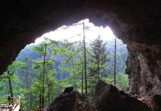 火山口国家森林公园景区