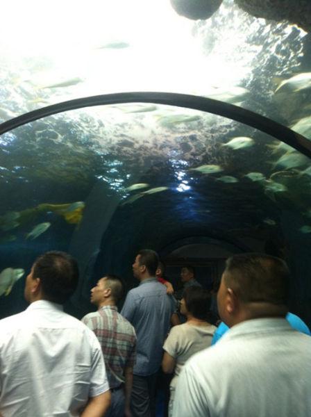 济南大明湖游乐场和海底世界全新亮相
