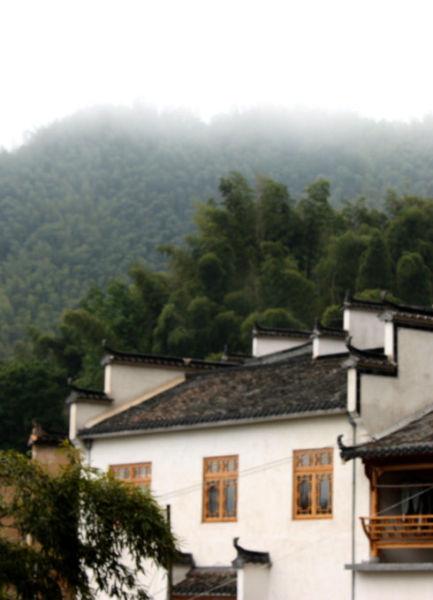 竹海深处的木坑村