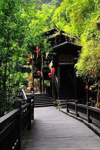 掩藏在翠竹中的吊脚楼