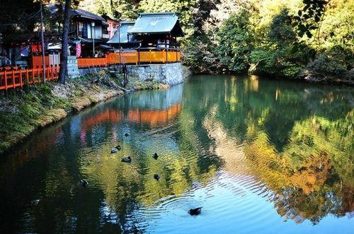 京都散发着含蓄的光芒