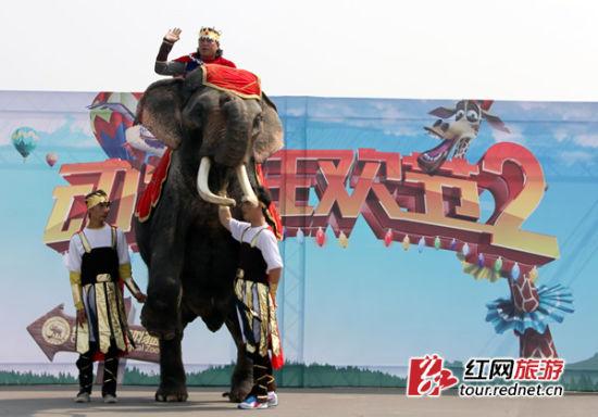 第二届动物狂欢节之森林舞会在长沙生态动物园开启图片