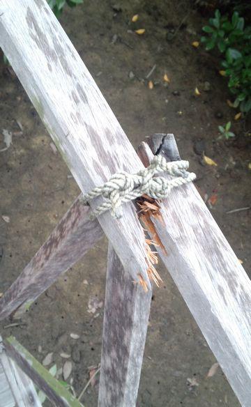 破损的绿道护栏