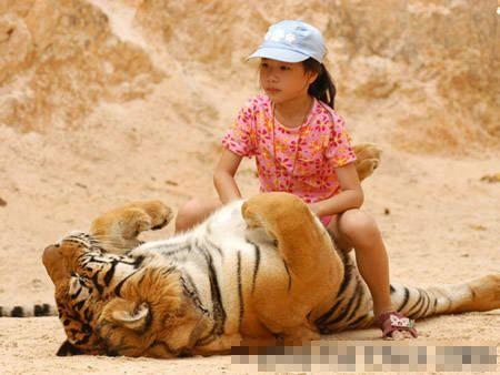 小孩子骑老虎