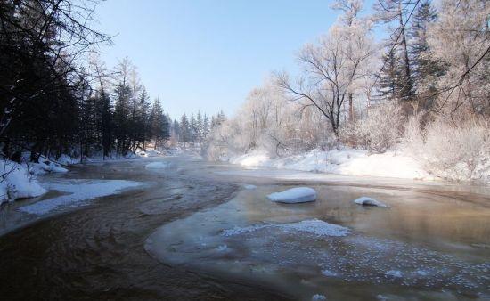 汤旺河国家公园冬季景观