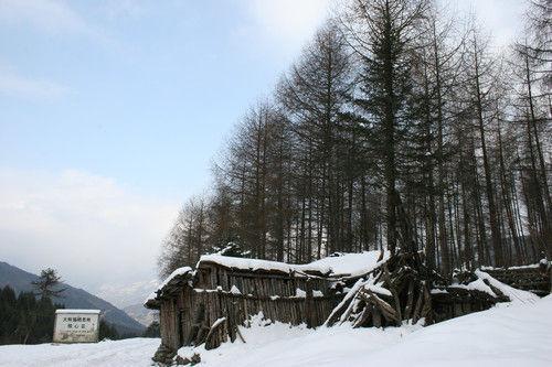 神木垒冬景