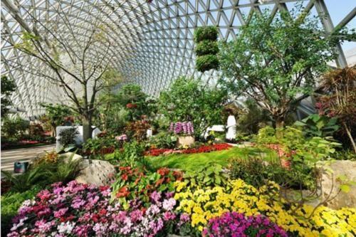 上海旅游去松江玩转佘山、欢乐谷、植物园