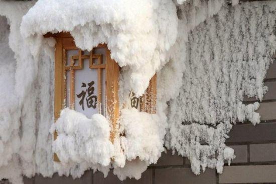 体验浪漫暖冬 大庆林甸一日游
