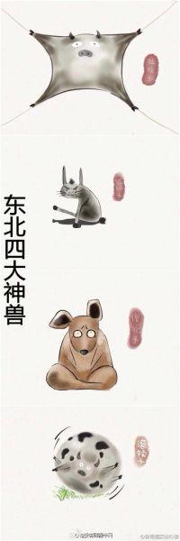 东北四大神兽八大犊子 网友大赞萌萌哒(图)