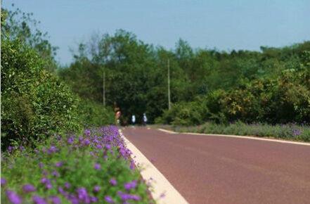 龙池山自行车公园