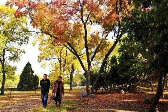 新乡市人民公园秋景 摄影:@快乐人生