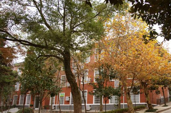 盘点湖南高校校园最美秋景 湖南师范大学图片