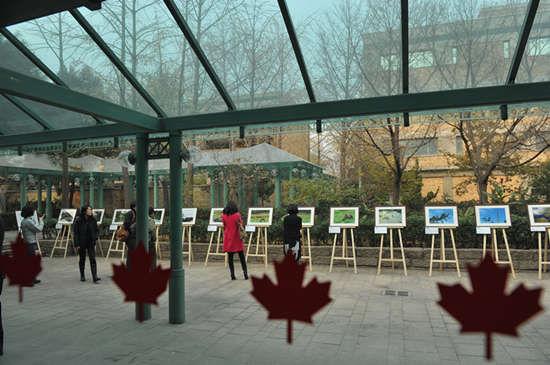 加拿大大使馆,来宾参观奚志农BC生态摄影展