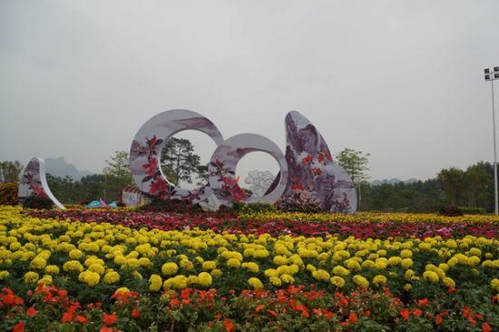 大明山的春花 图:冯保翠