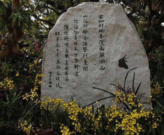 亭亭如君子 图:老镇轶闻