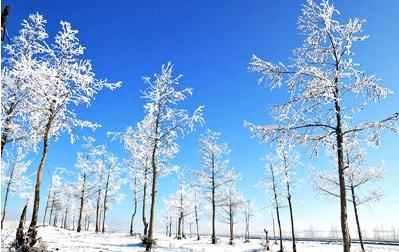 牙克石冬季景观