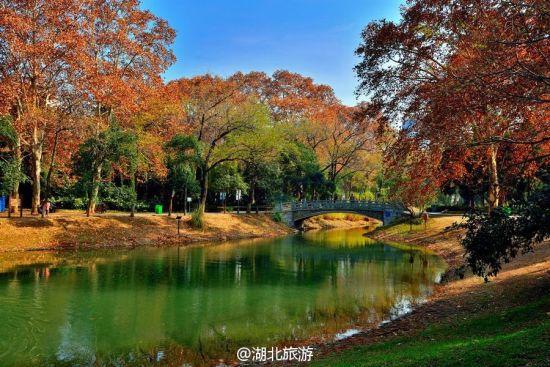 新浪旅游配图:解放公园 图片来自@江城雨巷