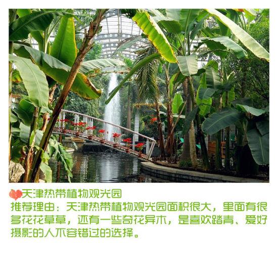 天津热带植物观光园(来源:网络)